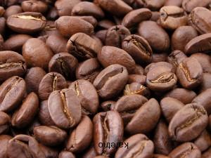 Kenya AA Top Plantation, washed